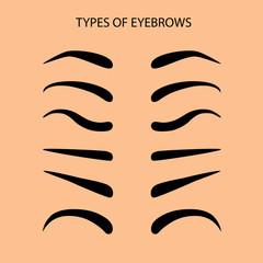 Basic Set eyebrow shapes Vector illustration eyebrows