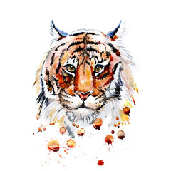 Adult tiger graphic, icon, vector watercolor illustration