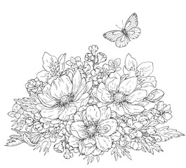 Anemone flowers and butterfly sketch