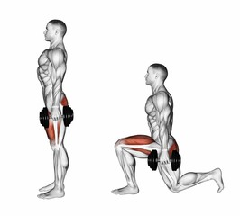 Lunges with dumbbells. Exercising for bodybuilding. Target muscles are marked in red. Initial and final steps. 3D illustration