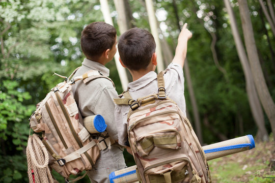 two boys go hiking with backpacks on a forest road bright sunny
