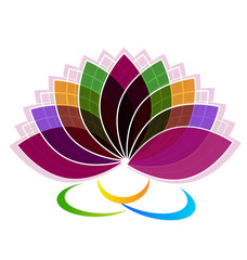 Lotus yoga symbol flower vivid colors