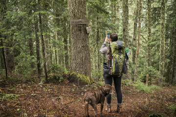 Rear view of hiker photographing in forest