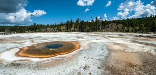 Natural hot spring, Yellowstone, Wyoming