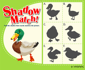 Shadow matching game with duck