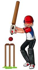 Man athlete playing cricket