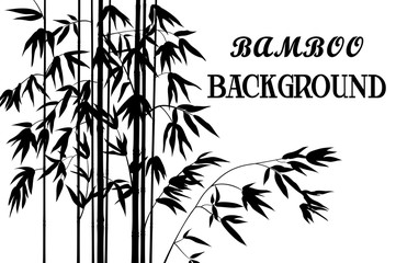 Exotic Background, Tropical Bamboo Plants Stems with Branches and Leaves Black Silhouettes Isolated on White. Vector