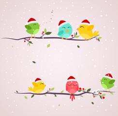 Colorful birds on christmas scene