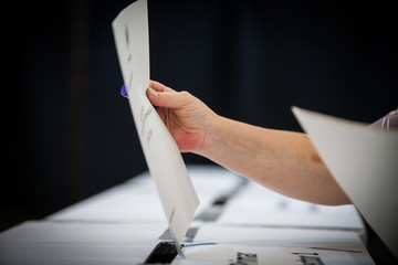 Voting hand detail