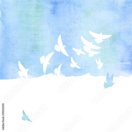 Fototapete pigeon in the sky watercolor hand drawn illustration