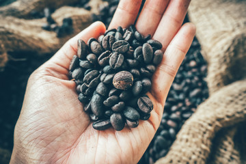 Roasted coffee beans on the hand