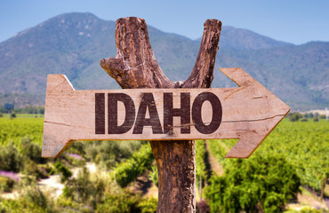 Idaho directional arrow in a countryside