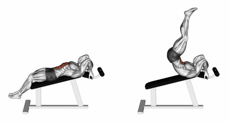 Decline Reverse Crunch. Exercising for bodybuilding Target muscles are marked in red. 3D illustration