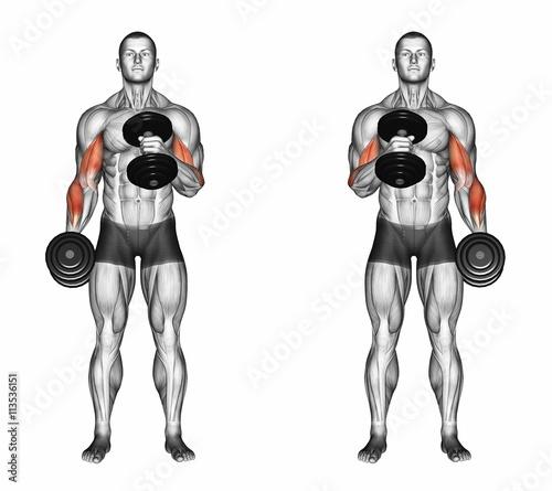 """Cross Body Hammer Curls. Exercising For Bodybuilding"