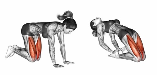 Looking At Ceiling. Exercising for Fitness. Target muscles are marked in red. Initial and final steps. 3D illustration