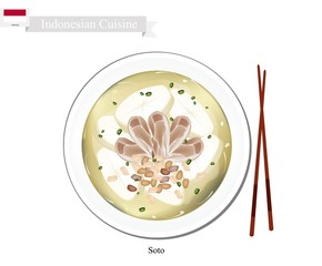 Soto or Indonesian Chicken Soup with Meat