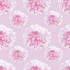 pattern of pale pink peonies luxury fresh