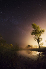 starry night, the stars over the lake, green grass, trees illuminated by a flashlight, the Milky Way, fisheye photo, mist over the lake, magical atmosphere