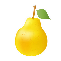 Vector illustration of yellow pear on a white background