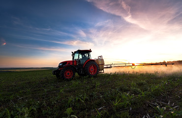 Tractor spraying a field on farm in spring, agriculture Wall mural