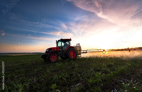 Fototapete Tractor spraying a field on farm in spring, agriculture