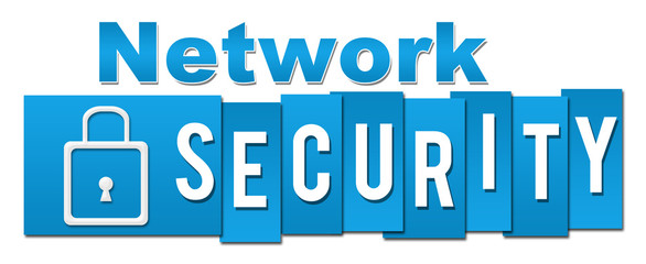 Network Security Professional Blue