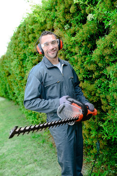 handsome young man professional gardener trimming and landscaping green hedge