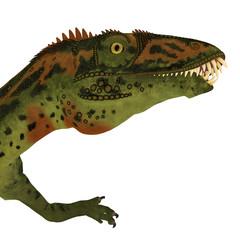 Masiakasaurus Dinosaur Head - Masiakasaurus was a theropod dinosaur that lived in Madagascar during the Cretaceous period.