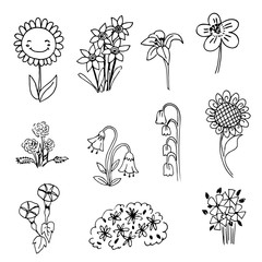 cute doodle flower on black line drawing sketch vector
