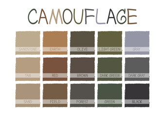 Camouflage Color Tone with Name Vector Illustration