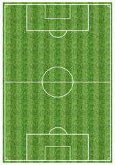 Football Field Narrow Horizontal Stripes Pattern with Real Grass Texture