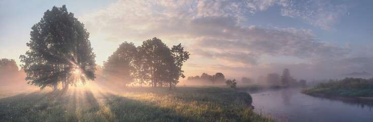 Photo sur Toile Saumon Beautiful summer morning landscape