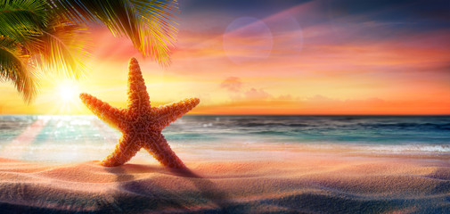 Wall Mural - Starfish On Sand In Tropical Beach At Sunset