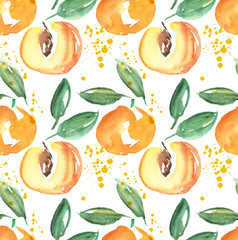 watercolor apricot fruit illustration. hand drawn paint image