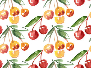 watercolor hand made cherry  fruit  illustration. paind drawn ma