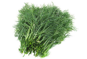 Dill herb on white