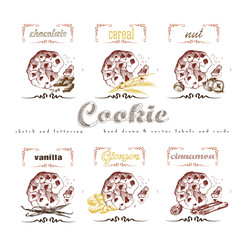 Cookies label lettering hand drawn sketch collection with chocolate, cereal, nut, vanilla, ginger, cinnamon. Vector vintage illustration and letter elements.