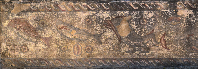 Antique Roman mosaic with sea life motifs located at the archaeological site of Milreu, in Estoi, Algarve, Portugal