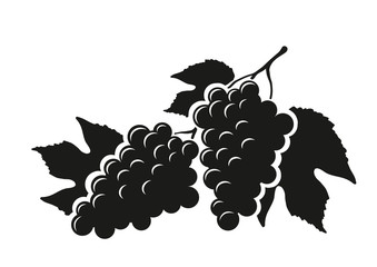 Silhouette of grapes