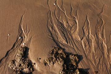 Фактура мокрого морского песка