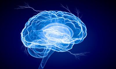 Human brain impulse