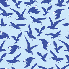 Background The contour of the sea birds.Background  Blue sea birds in flight. Background Sea birds fly.