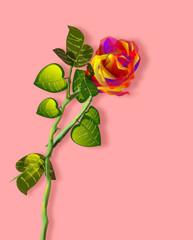Rosa, illustrazione floreale con fondo rosa confetto.