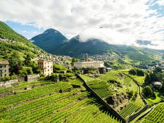 Sondrio - Valtellina (IT) - Panoramica dei vigneti e del Convento di San Lorenzo dalla frazione sant'Anna