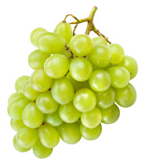 Fresh green grapes isolated on white. With clipping path.