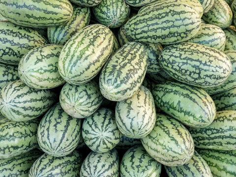 Fresh watermelon at the local farmers market.