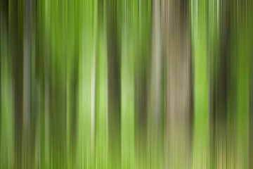 Abstract art for background use. An image of a forest processed with a motion blur effect. The color tone is green.