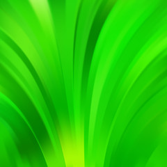 Green smooth light green lines background. Vector illustration