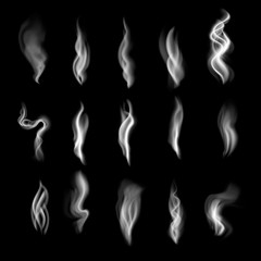 Delicate white cigarette smoke waves on transparent background vector illustration