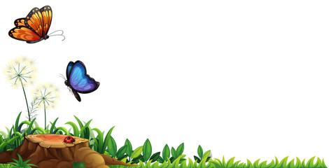 Scene with butterflies in the garden